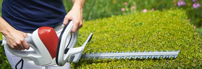 Elektriniai sodo įrankiai