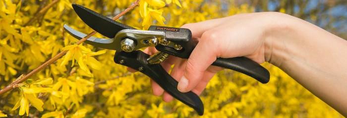 Mechaniniai sodo įrankiai