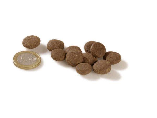 Mažų ir vidutinių veislių šuniukams (vištiena ir žuvis) 2,5 kg
